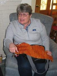 diana's scarf story